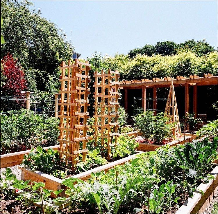 Most Beautiful Vegetable Gardens 23 Vertical Vegetable 400 x 300