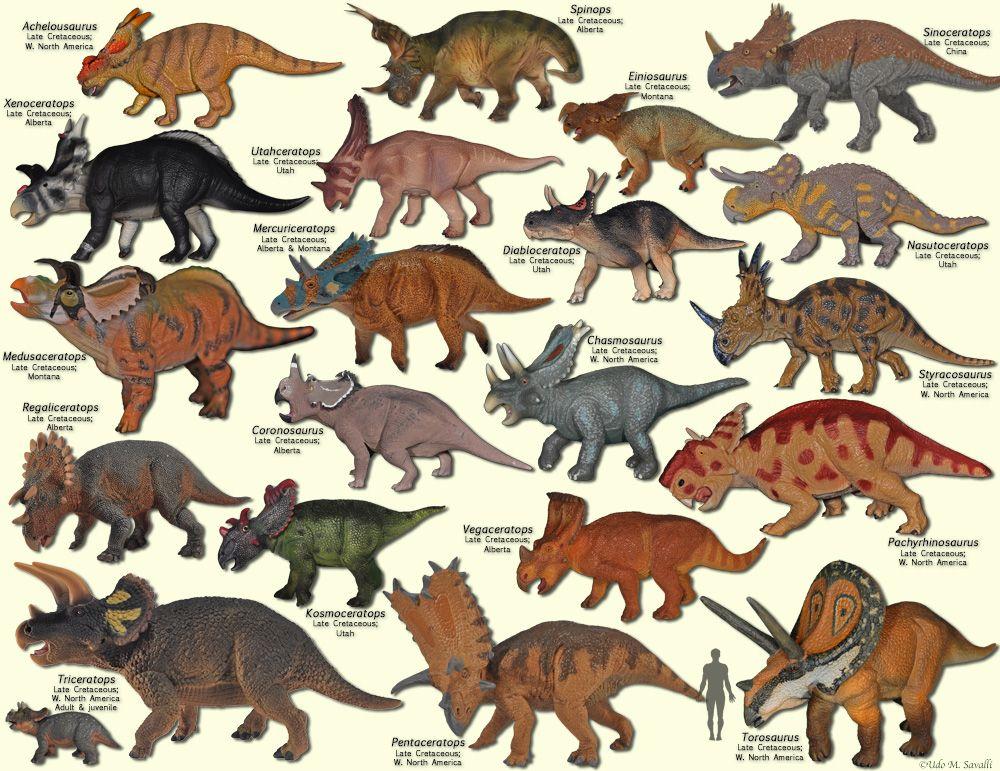 BIO113Herbivorous Dinosaurs in 2020 Prehistoric animals