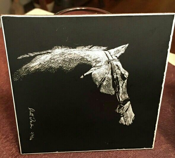 Black and White horse scratchboard