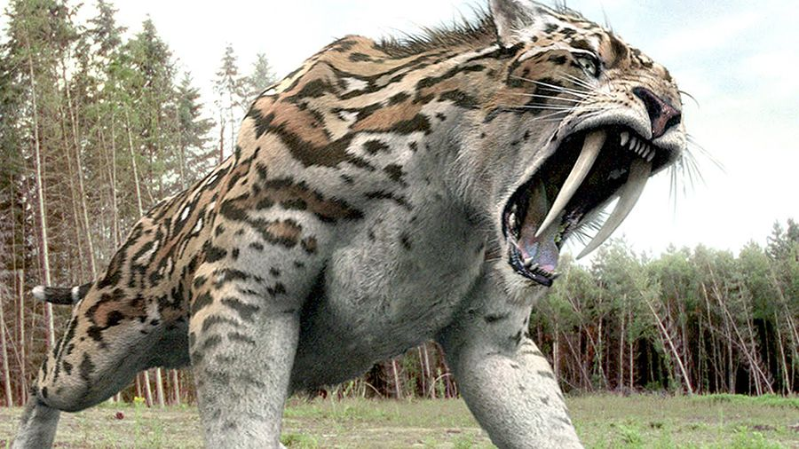 9 Extinct Animals That Could Be Resurrected One Day