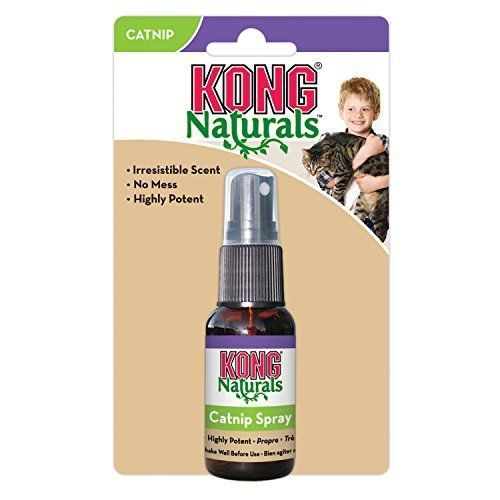 Details about KONG Naturals Catnip Spray For Cats on Toys