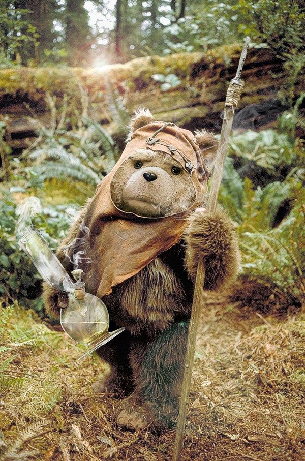 tewok - ted as an ewok from endor - Worth1000 Contests