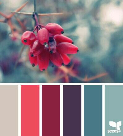 Cool color pallet