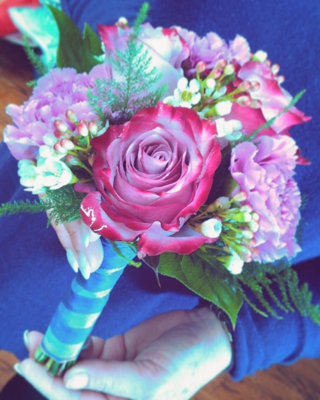 Roses, Roses, ROSES! Fragrant pink mondial, orange two ... |Two Tone Lavender Roses