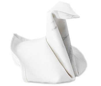 Image Detail For How To Fold Instructions On Each Napkin Create A Snail Swan