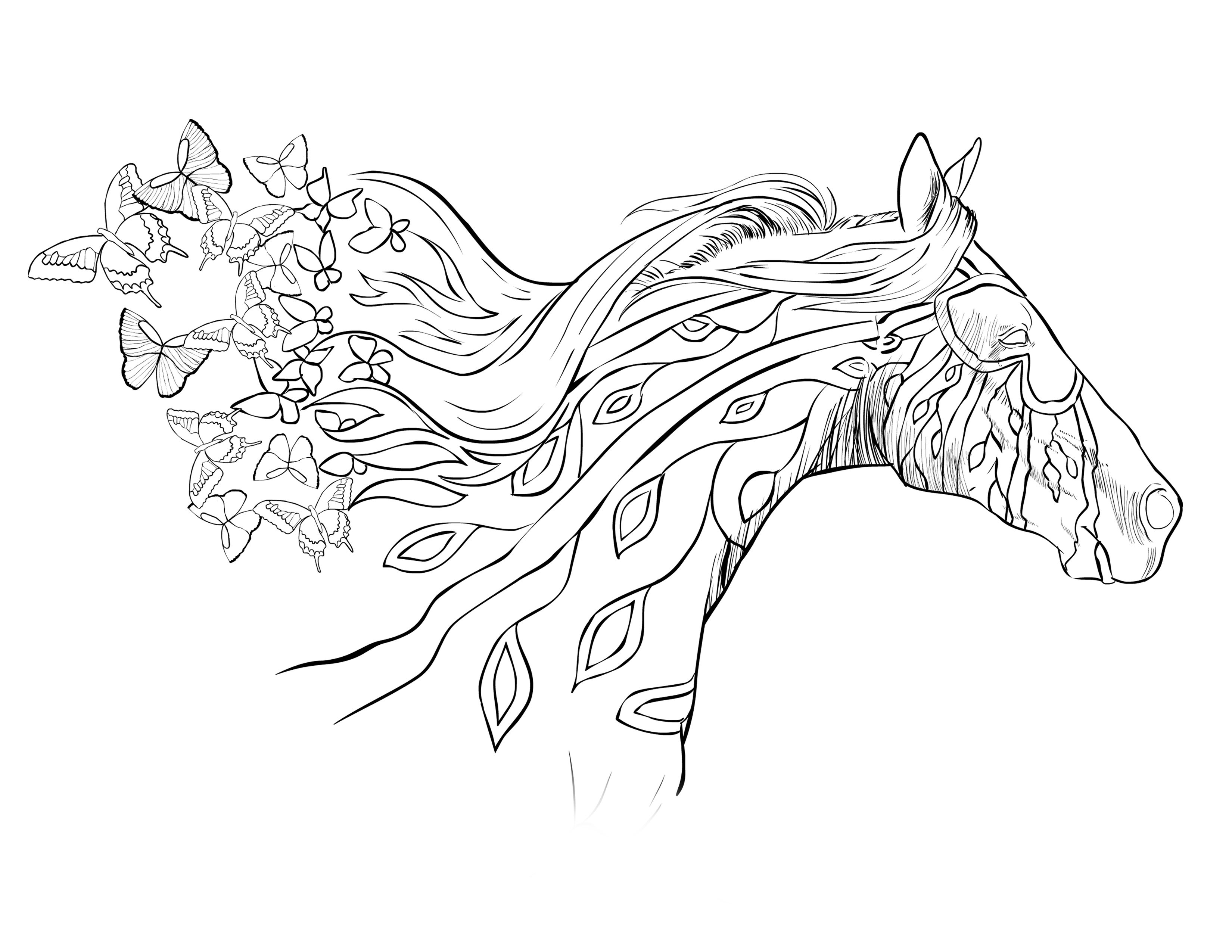Horse Coloring Pages Horse Coloring Pages Adult Coloring Pages