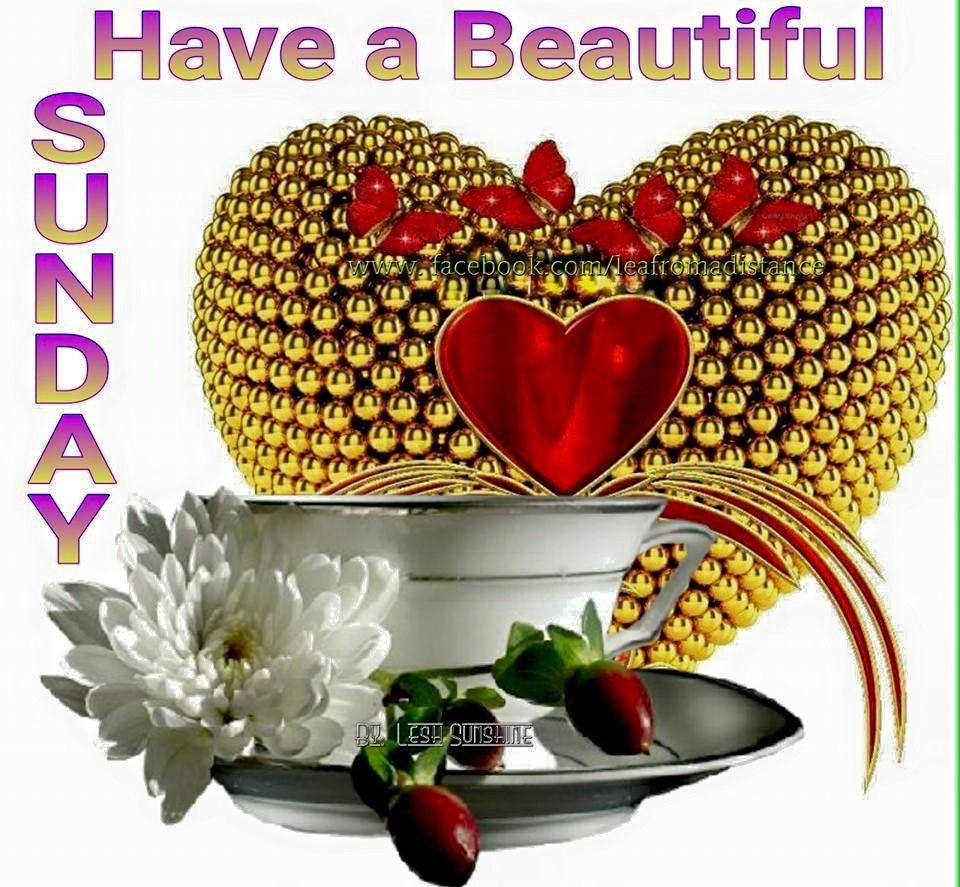 Have A Beautiful Sunday God Bless Yall Sunday Pinterest