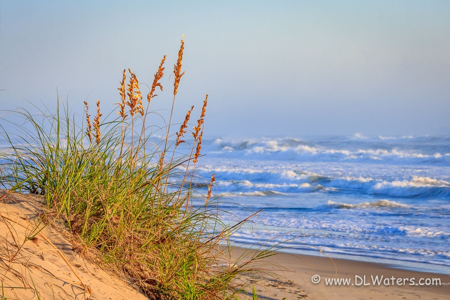 Sea And Sea Oats Sunny Cape Hatteras Beach Morning On The Outer Banks Of Nc Dlwaters Com To See Outer Banks Beach Cape Hatteras Beach North Carolina Travel