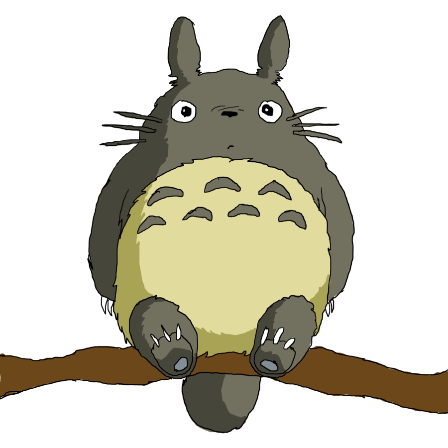 Things to do How To Turn Your Cat into Totoro Totoro