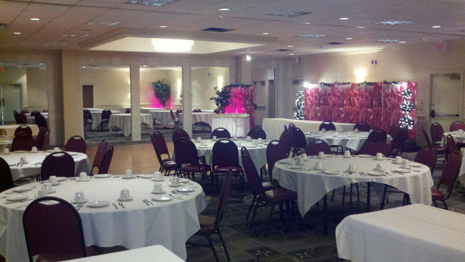 Undos Catering hall in West Virginia using art print room divider