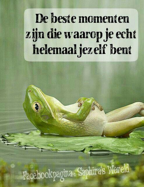 www spreuken en gezegdes nl Volg mn facebookpagina https://.facebook.com/saphirabm #quote  www spreuken en gezegdes nl