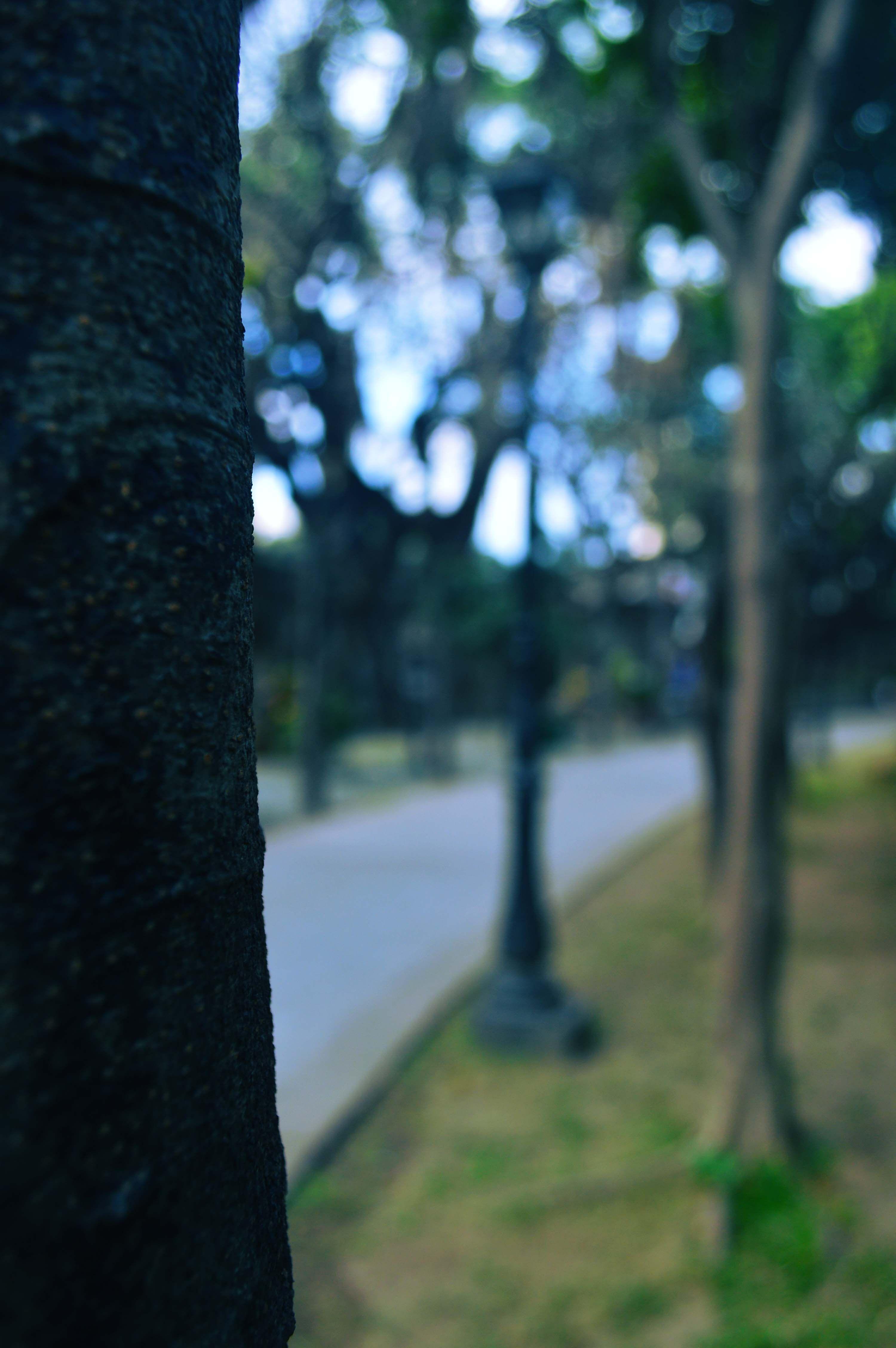 Random Dslr Background Images Background Images Background Images Hd