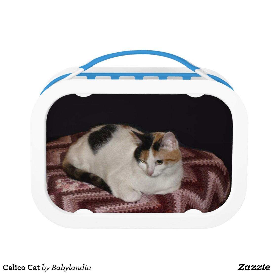 Calico cat lunch box calico cat canvas art
