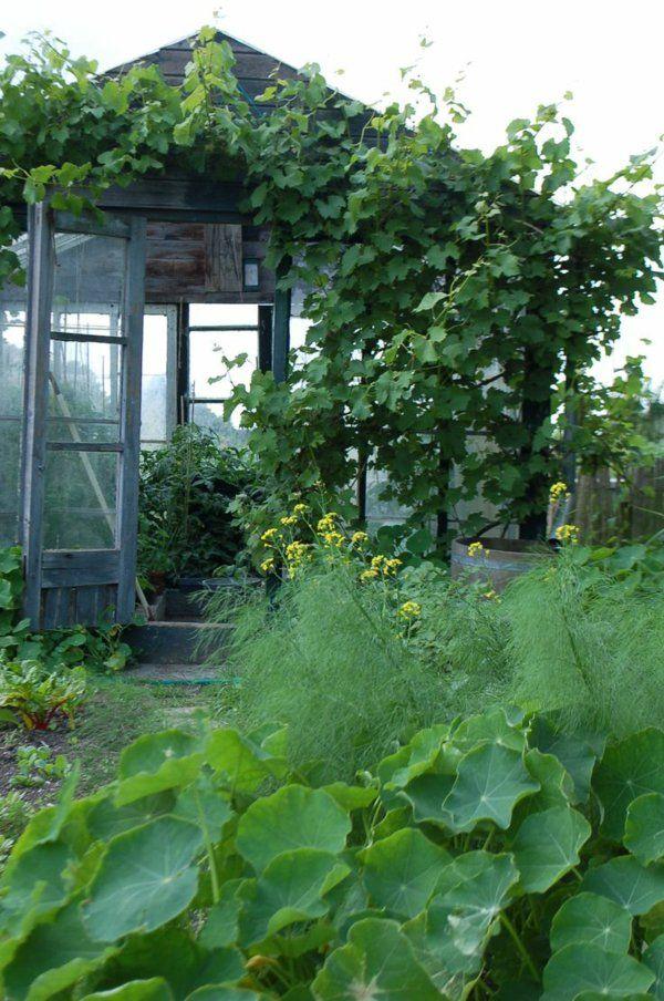 Wintergarten Gestalten Und Pflegen Kann Das Ihr Neues Hobby Sein