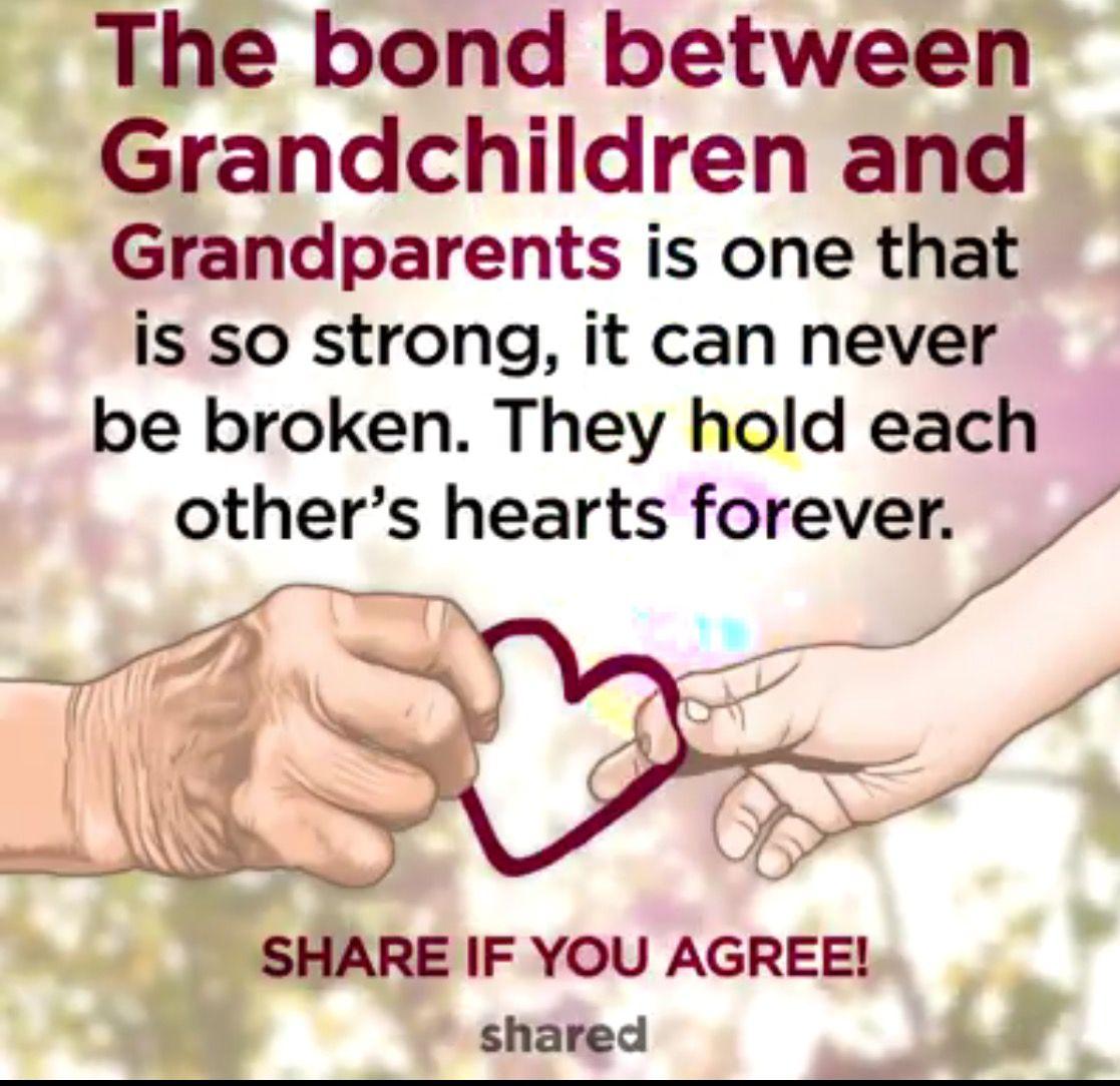 The bond between grandparents and grandchildren  Grandparents