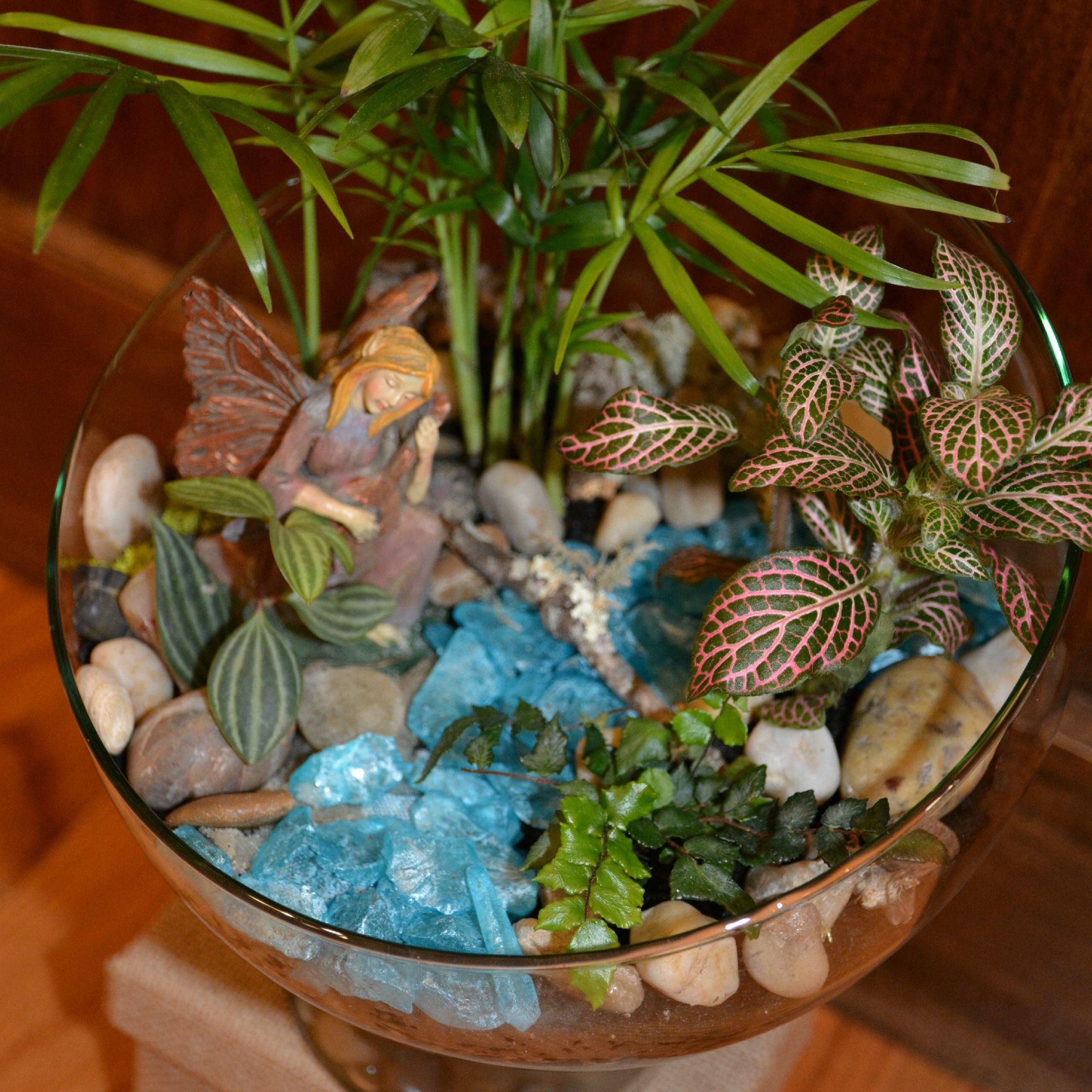 Socoolgiftsandaccessories - Terrarium - Fairy Garden - Perfect Gift For