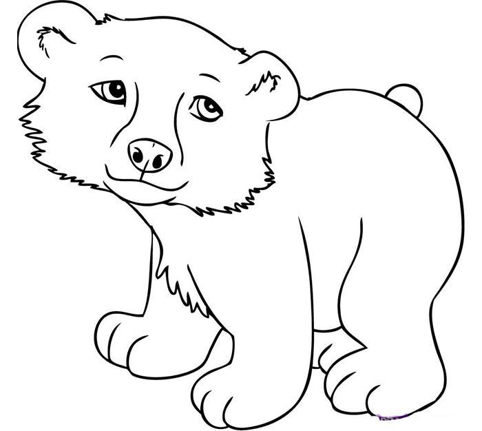 70 Animal Colouring Pages Free Download Print Animal Coloring Pages Wild Animals Pictures Cartoon Drawings Of Animals