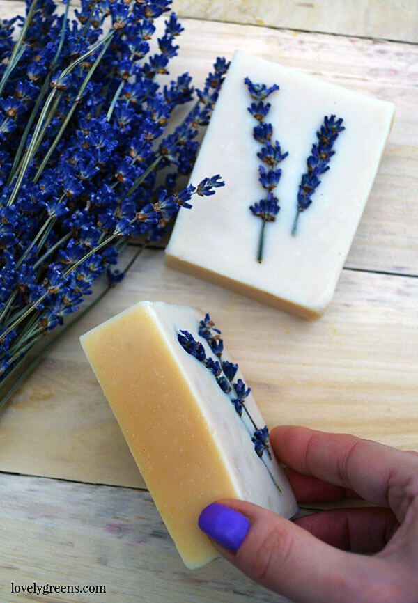 Photo of Honey & Lavender Soap Recipe + Instructions