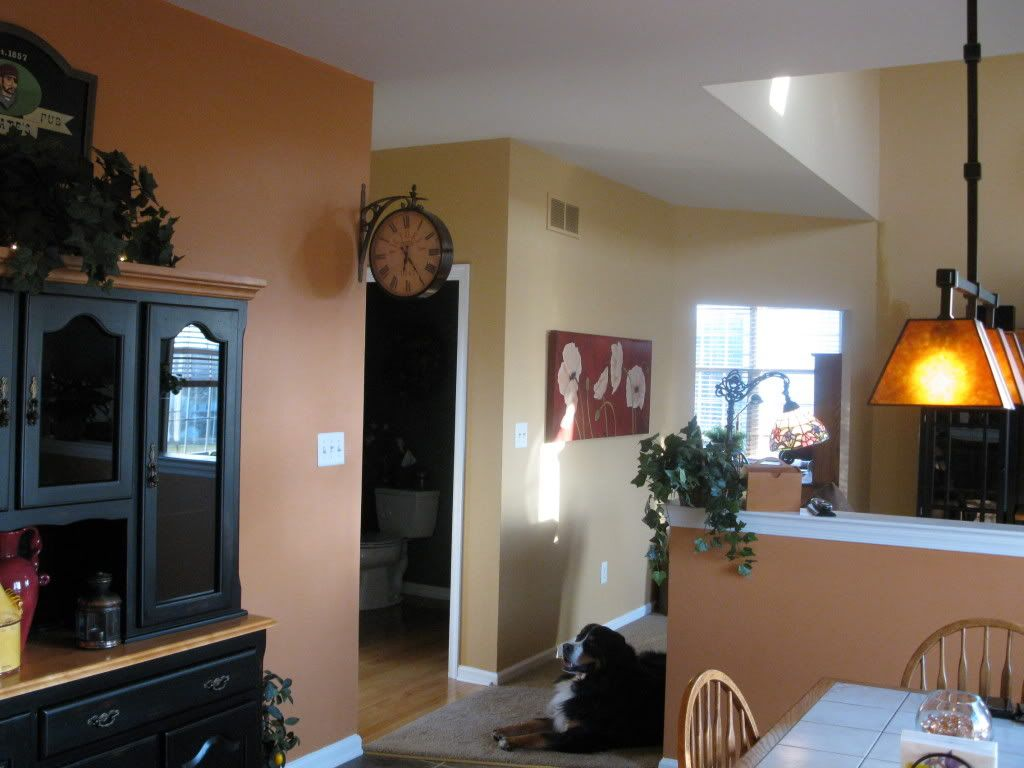 Orange Grounded By Behr Supposed To Be A Match For Autumnal By Sherwin Williams Back