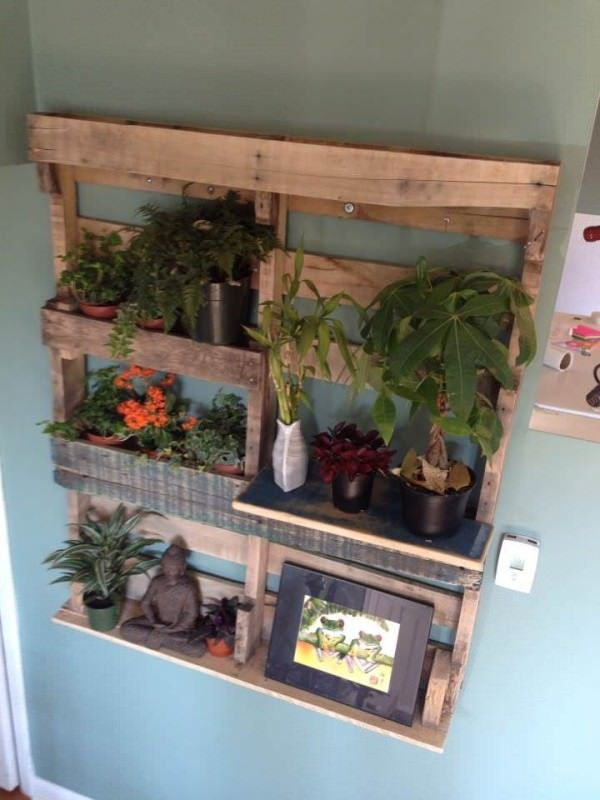 Pallet shelf for plants interessante arredamento for Progetti fai da te legno pdf