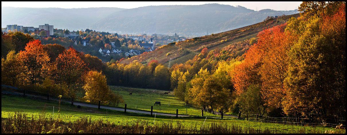 Trier in Herbst von Yutaka K.