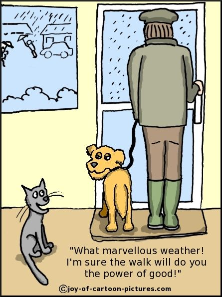 Its Raining Cats And Dogs Raining Cats And Dogs Rain Cartoon