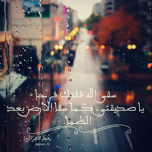 Pin By Mona Al Baker On صديقتي Wisdom Quotes Life Happy Birthday To Me Quotes Love Smile Quotes