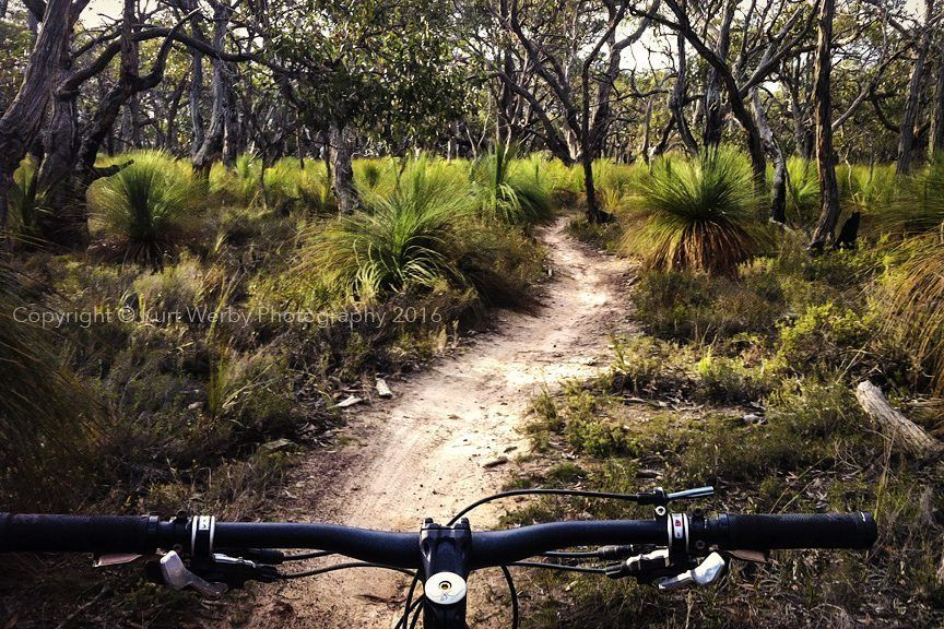 Venomous snakes and cat litter were on the menu for today's ride. by kurtwerby http://ift.tt/1KosRIg