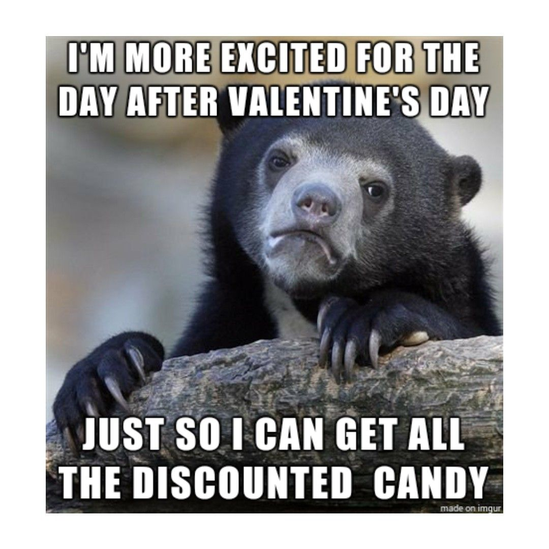 Valentines Day Confession Bear Funny Pictures Humor