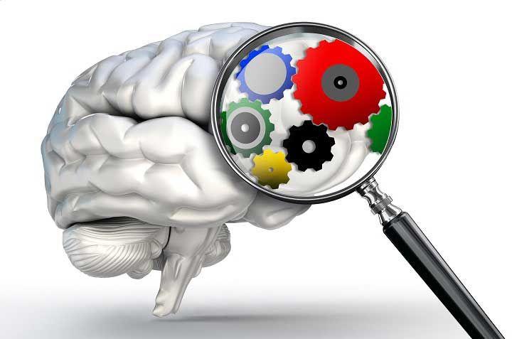 """Ya sea porque nuestro cerebro posee una capacidad limitada, o porque no siempre disponemos de toda la información que desearíamos o porque nos embarga la incertidumbre de las consecuencias de tomar una u otra decisión, por lo que en muchas ocasiones tomamos """"atajos"""" mentales para llegar a la solución de los problemas. Estos atajos mentales …"""