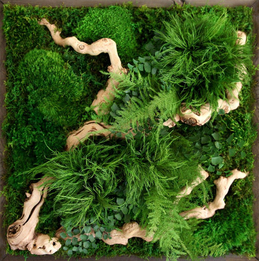 Poetic Botanical Wall Art – Fubiz Media
