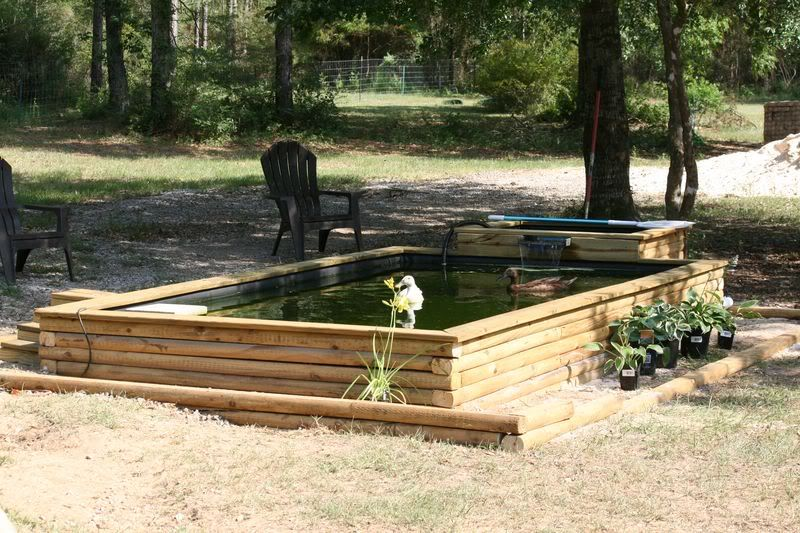Duck pond... This I really like! | Duck pond, Backyard farming