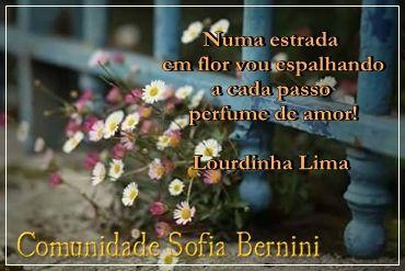 Numa estrada em flor vou espalhando a cada passo perfume de amor!  Lourdinha Lima