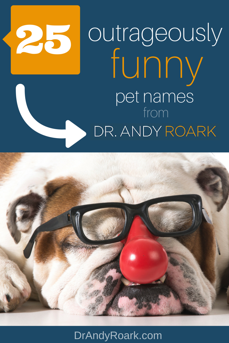 Need Pet Name Ideas For Your Dog Or Cat That Are Funny Get The List From Dr Andy Roark Pet Names Funny Dog Names Cute Animals Puppies