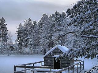 صور شتاء 2020 جميلة وتساقط الثلوج Winter Scenery Scenery Wallpaper Winter Landscape