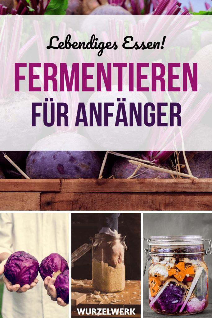 Die ultimative Anleitung zum Fermentieren mit Anti-Schimmel-Checkliste! - Wurzelwerk
