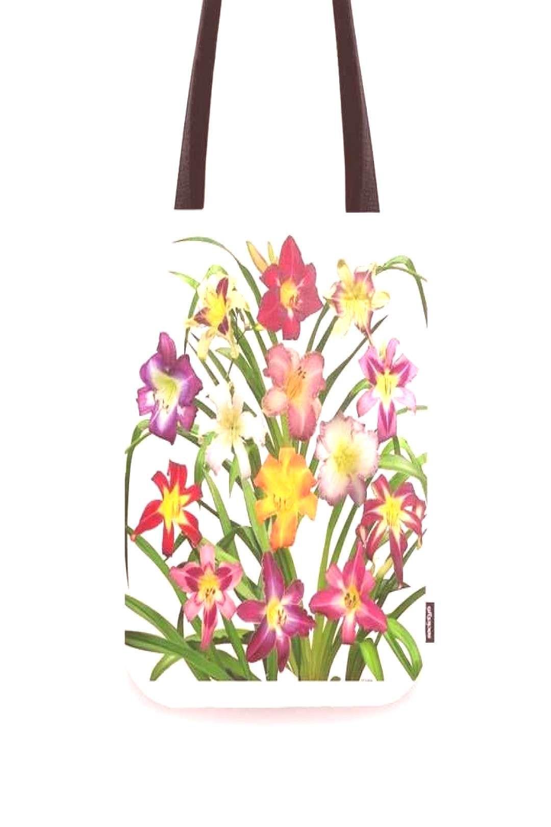Daylilies To