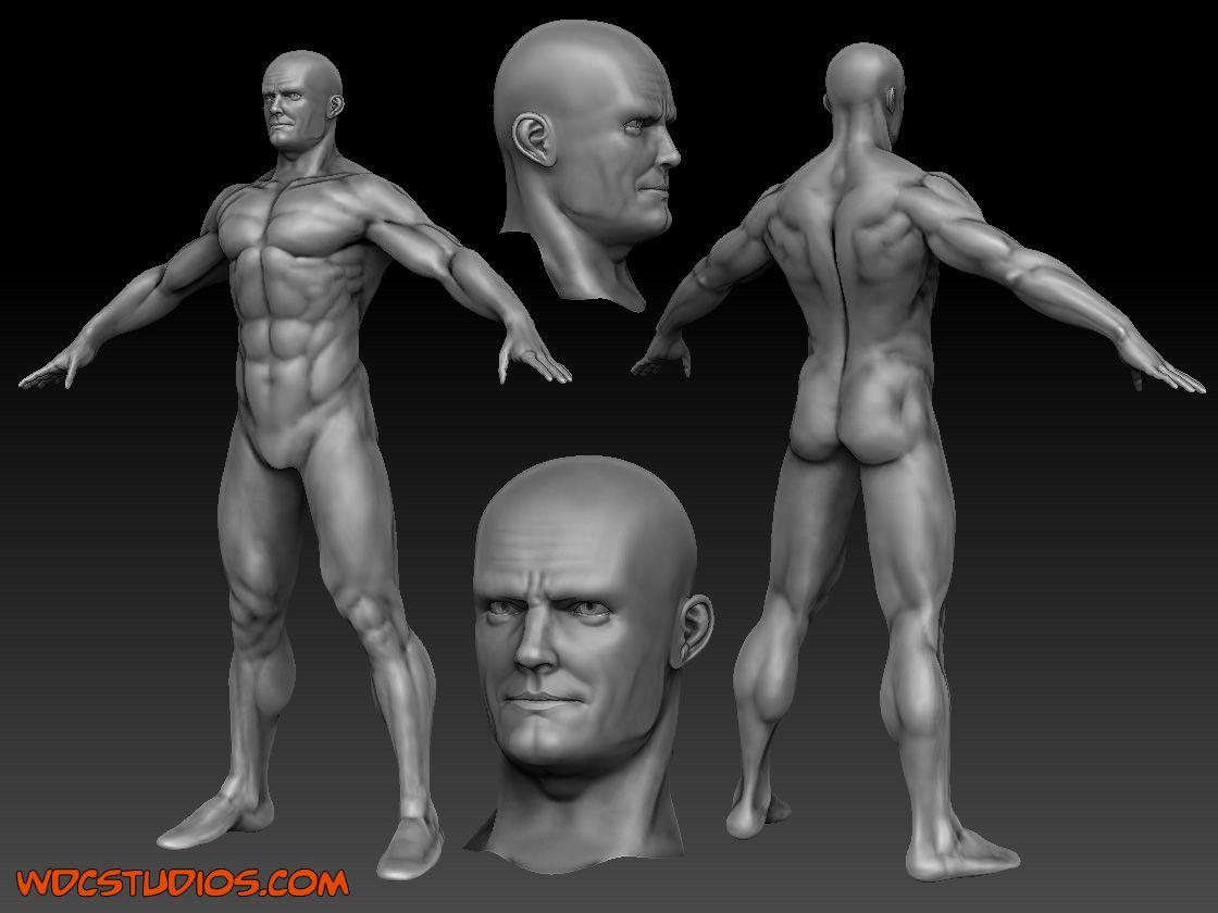 11++ Anatomyguy ideas in 2021