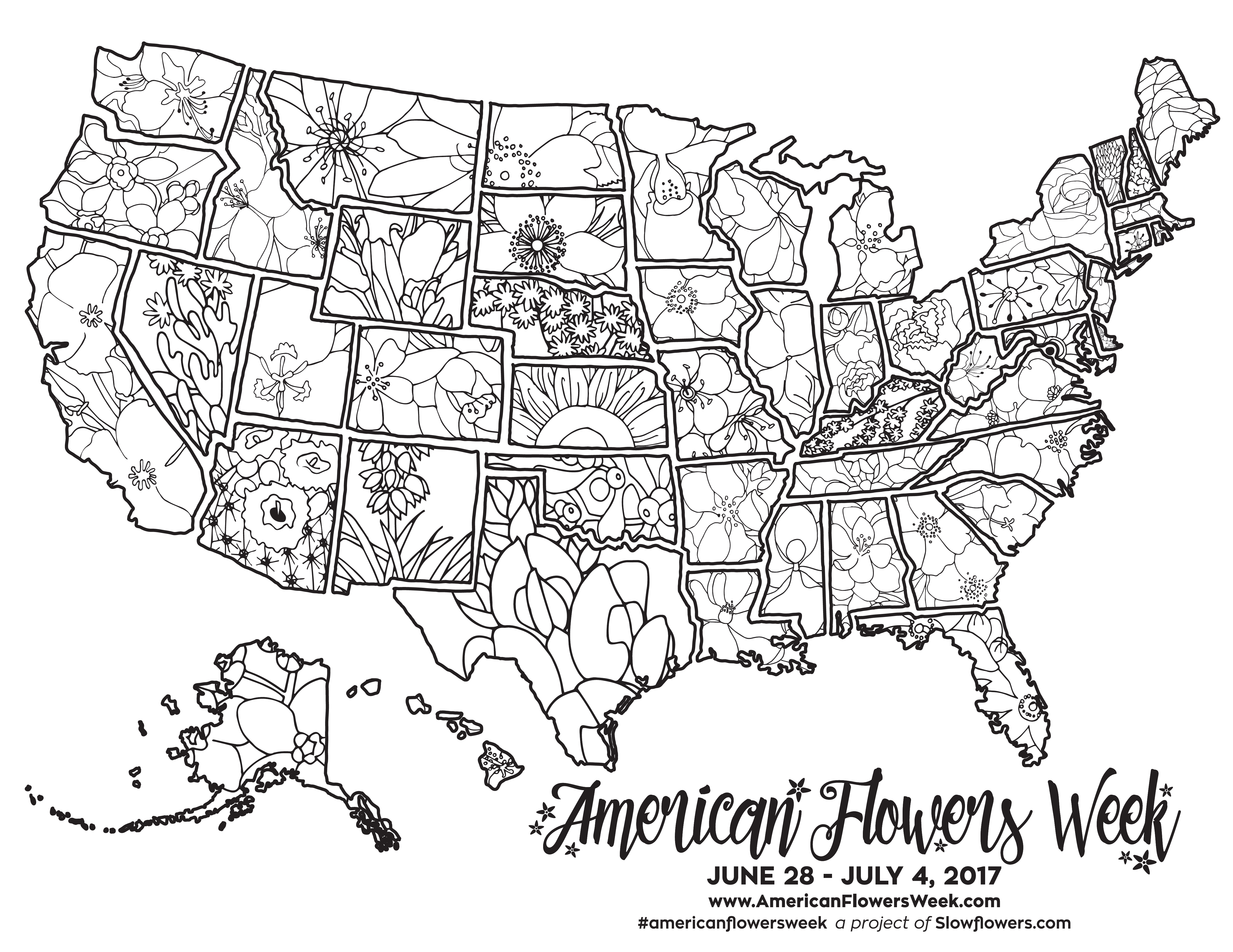 US State Flowers Map Detailed coloring pages, Flower