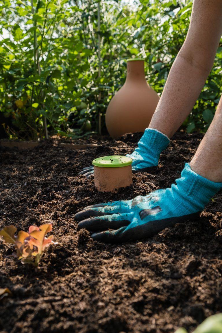 Hochbeete Bewassern Mit Gefassen Aus Ton Hochbeet Garten Hochbeet Bewasserung Garten