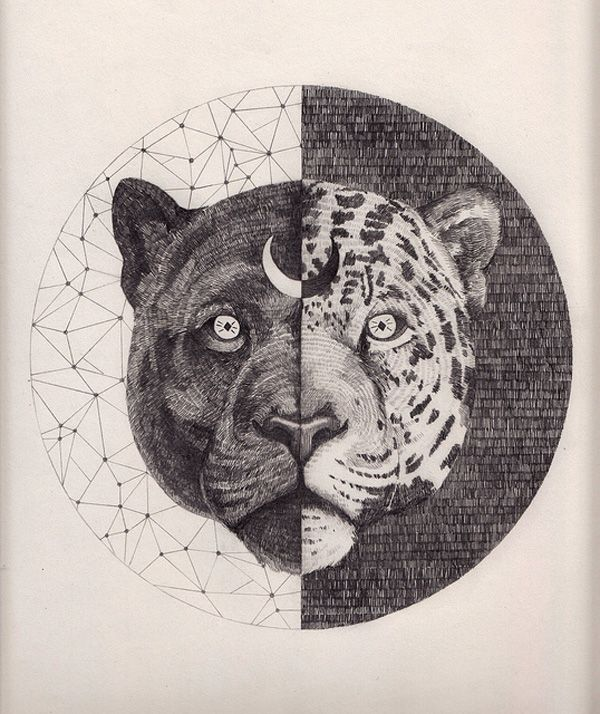 Vintage science journal and geometry inspired animals portraits by Peter Carrington - Bleaq