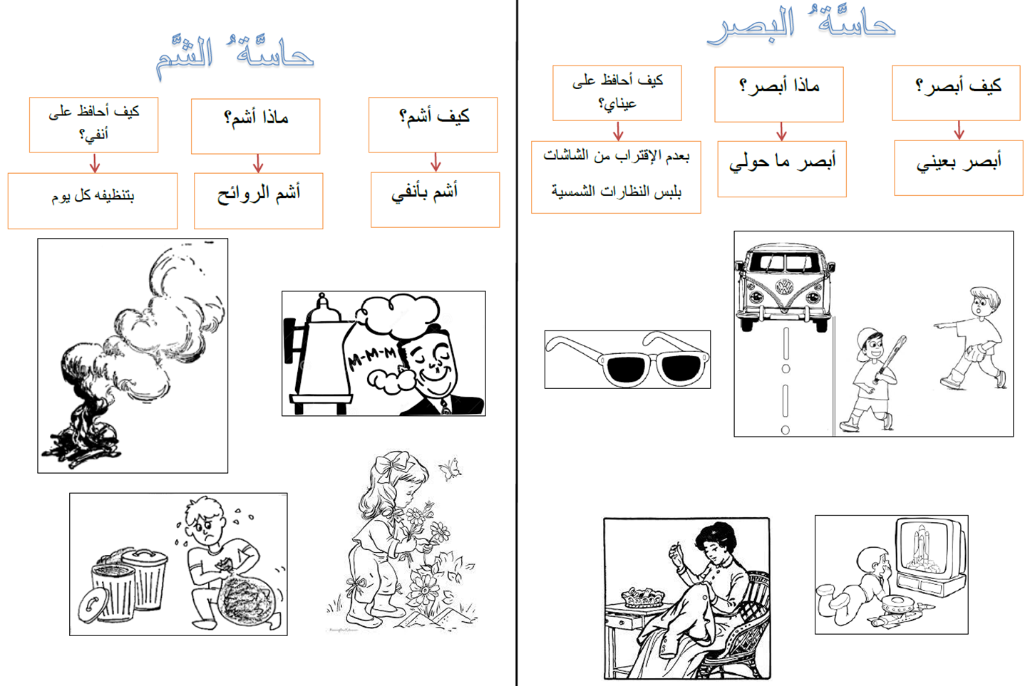 The Five Senses In Arabic Lesson Exercises P3 4