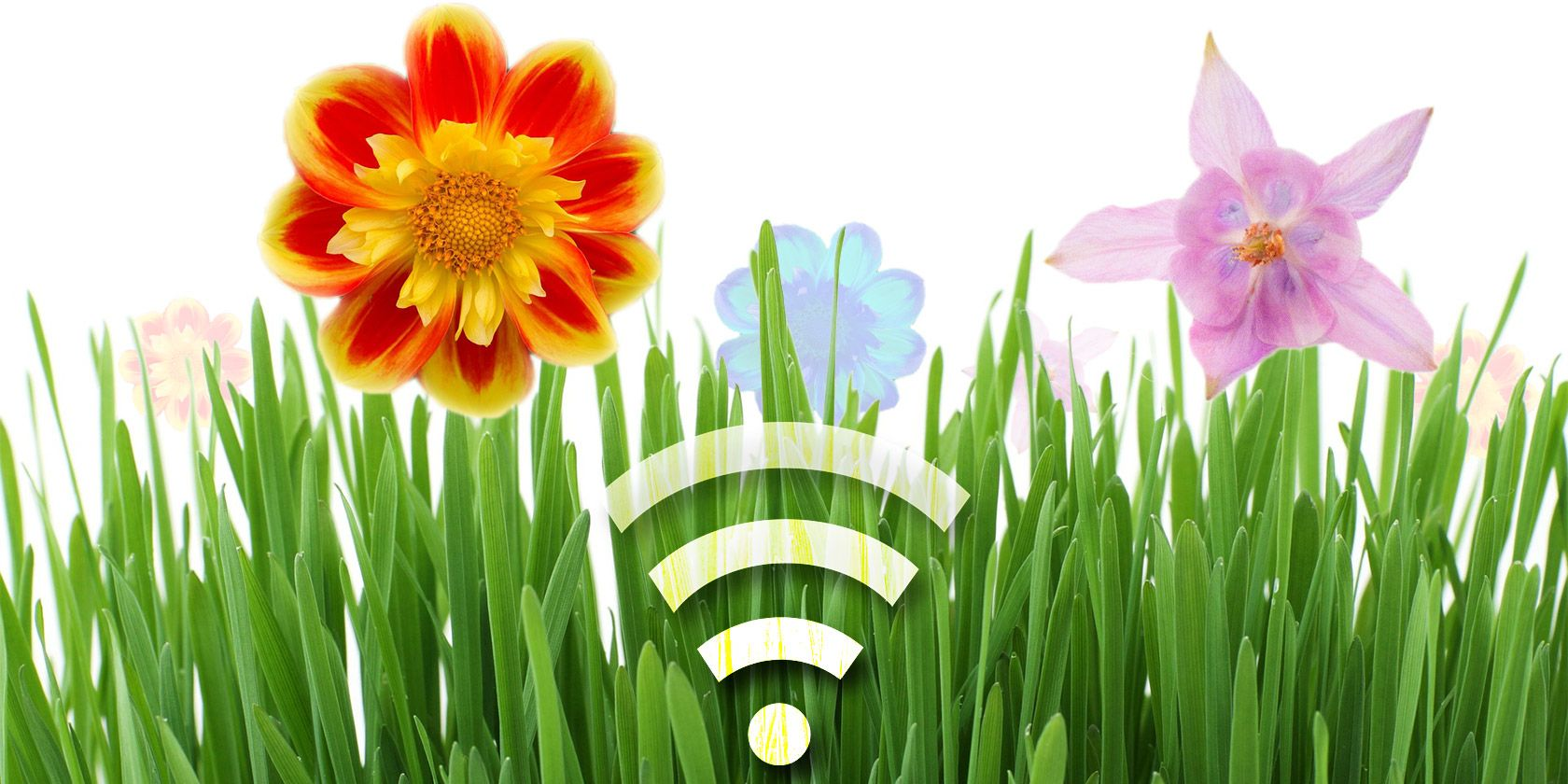 5 Smart Devices To Help Manage Your Garden #smartdevice