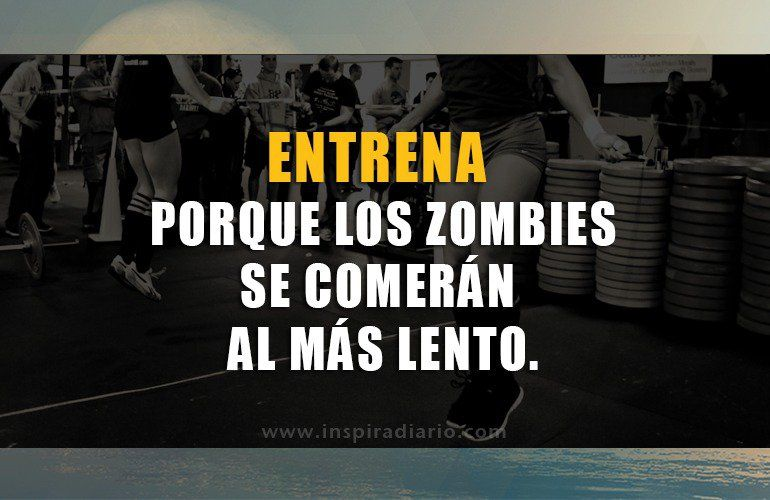 Frases Crossfit Buscar Con Google Frases Crossfit Company Logo