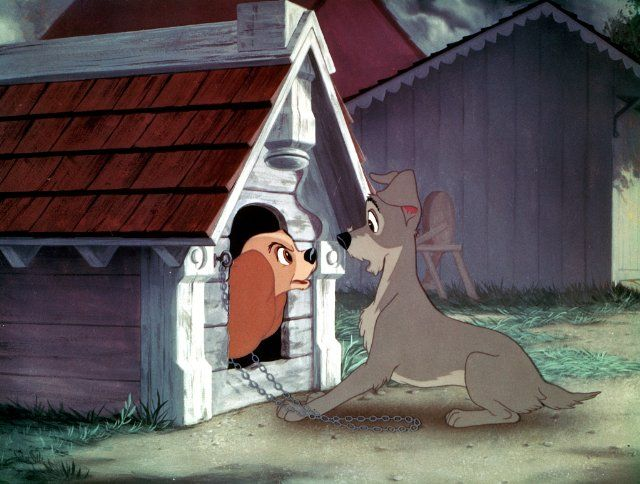 Pictures Photos From Lady And The Tramp 1955 Lady And The Tramp Disney Movie Art Old Disney