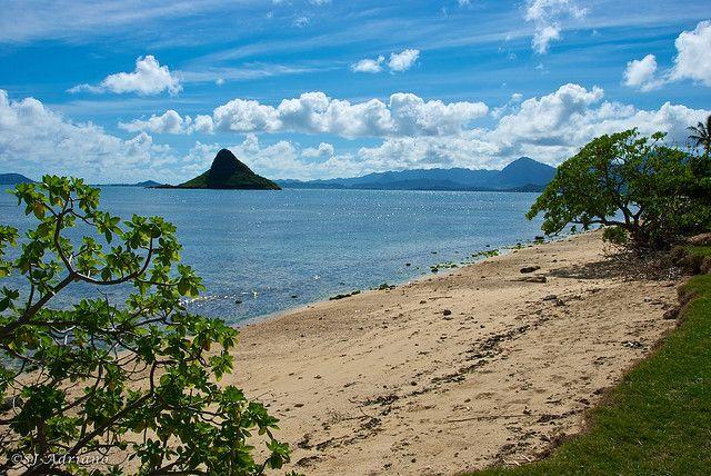 Hawaiian dating site for 50+