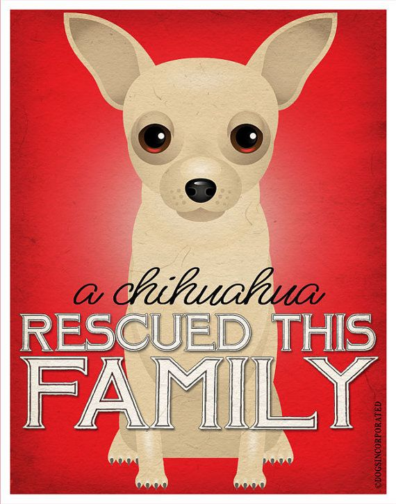 A Chihuahua Rescued This Family 11x14 Custom by DogsIncorporated, $24.00