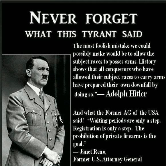 Image result for images hitler confiscated guns