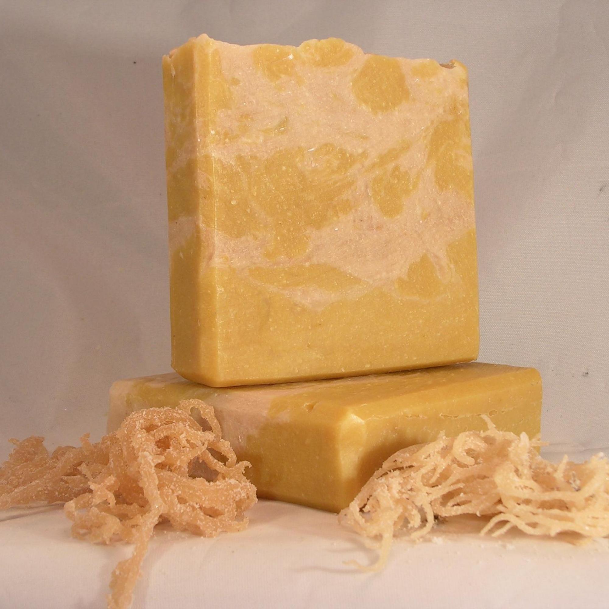 Sea Moss Tea Tree Hot Process Soap A Wonderful All Natural Body Wash Natural Body Wash Handmade Artisan Soaps Sea Moss