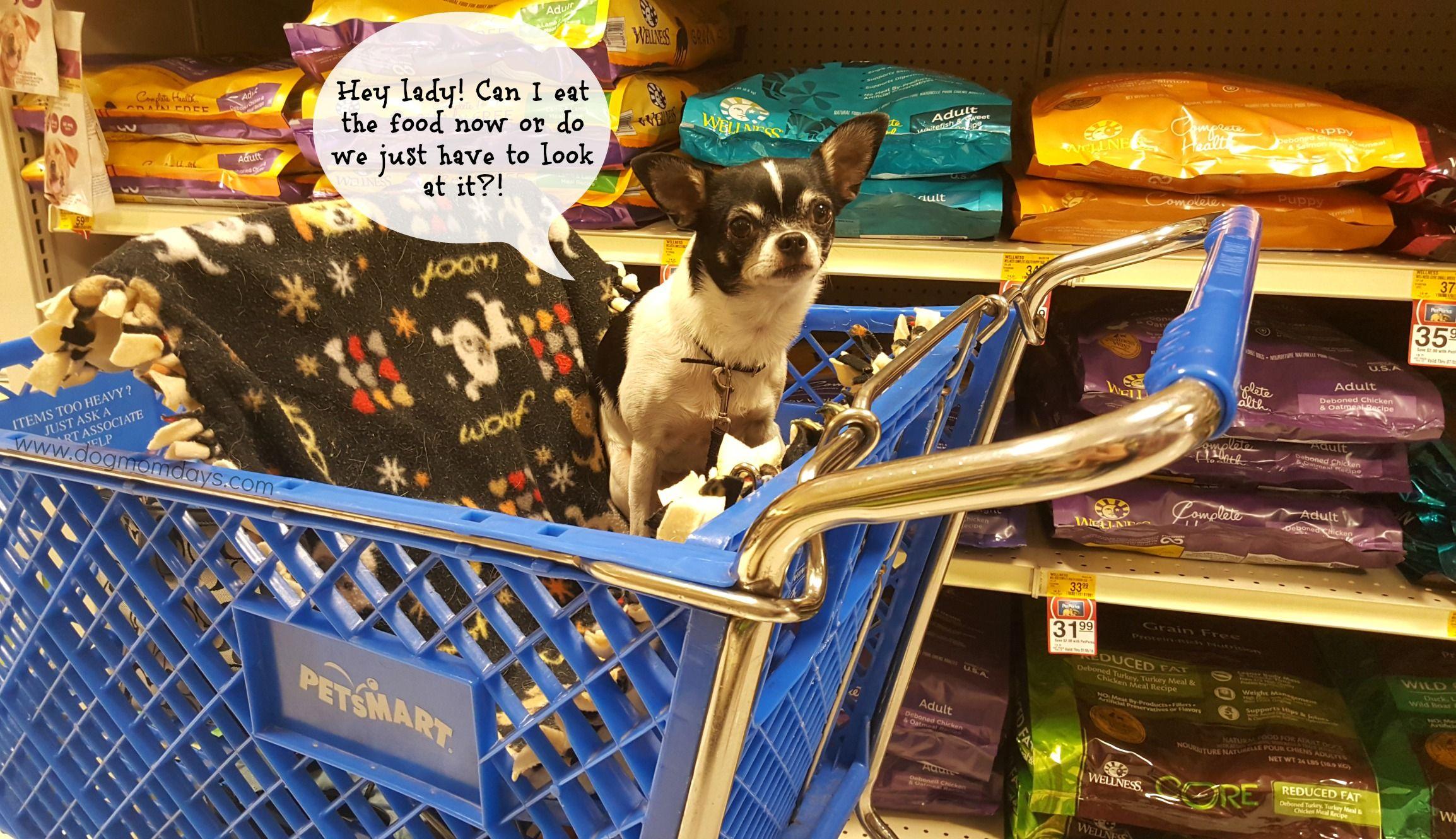 Save Money On Wellness Grain Free Dog Food At Petsmart